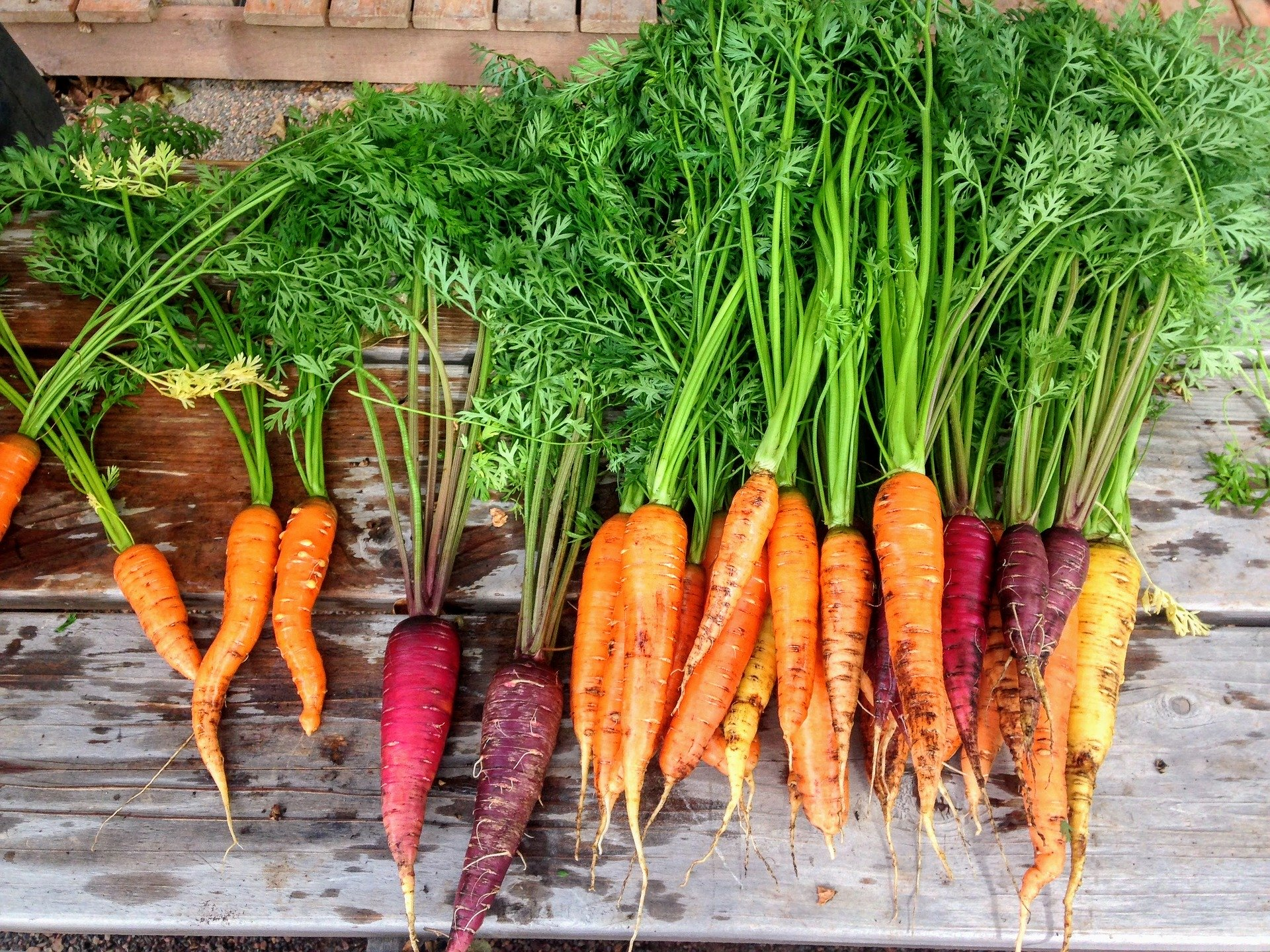 Truc et astuces légumes racine