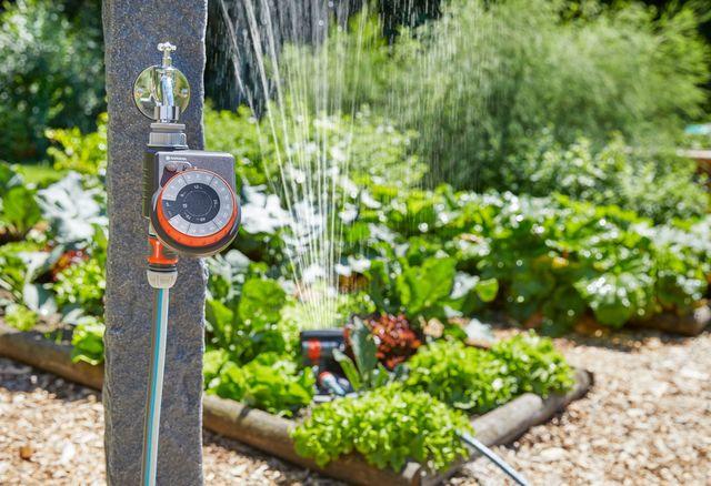 arroseur jardin automatique